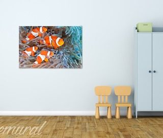 a mural aquarium canvas prints in childs room canvas prints demural