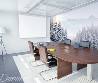 a hot and cold game office wallpaper mural photo wallpapers demural