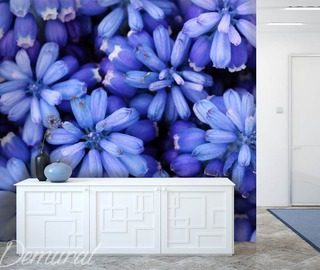 royal blue flowers wallpaper mural photo wallpapers demural