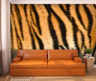 tiger s print patterns wallpaper mural photo wallpapers demural