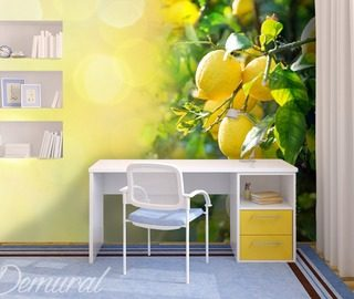 sicilian lemon teenagers room wallpaper mural photo wallpapers demural