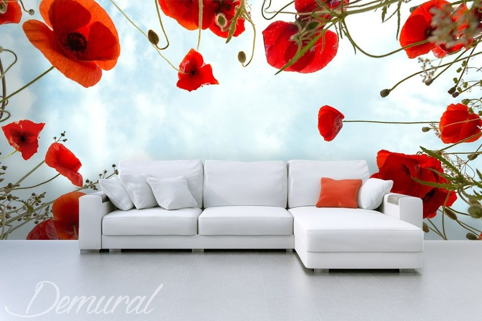 Decorative inquisitiveness Poppies wallpaper mural Photo wallpapers Demural