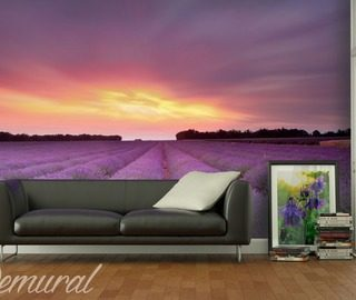 living room cicadas provence wallpaper mural photo wallpapers demural