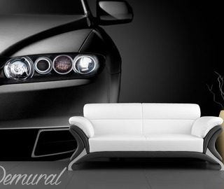 polished matt wall murals photo wallpapers vehicles photo wallpapers demural