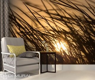 sun in the grass sunsets wallpaper mural photo wallpapers demural