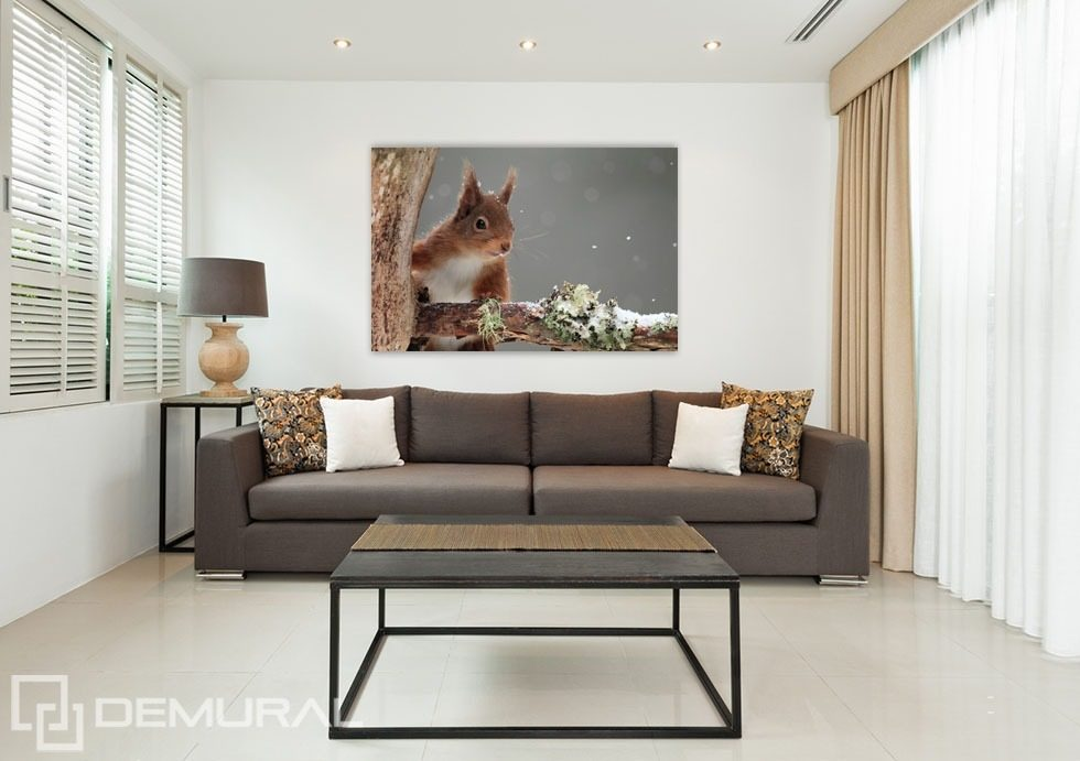 Adorable squirrel Posters in living room Posters Demural