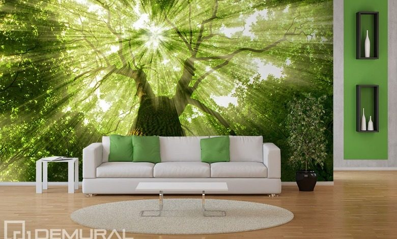 sunbeams in greenery forest wallpaper mural photo wallpapers demural