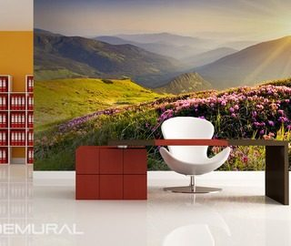 sunny morning on the hill office wallpaper mural photo wallpapers demural