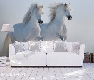 white steeds animals wallpaper mural photo wallpapers demural