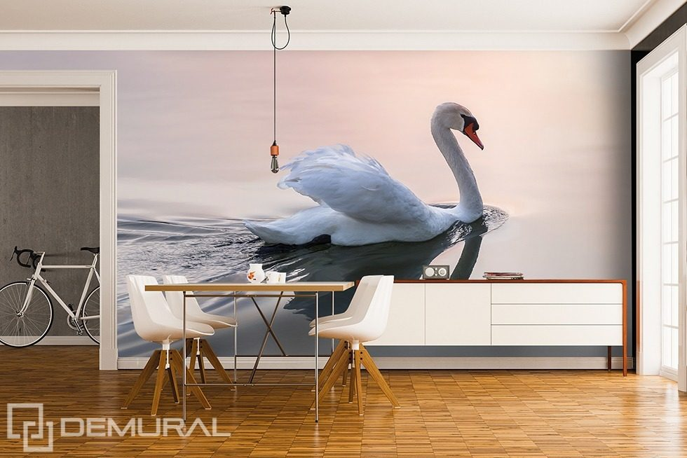 Softly, swan song Animals wallpaper mural Photo wallpapers Demural