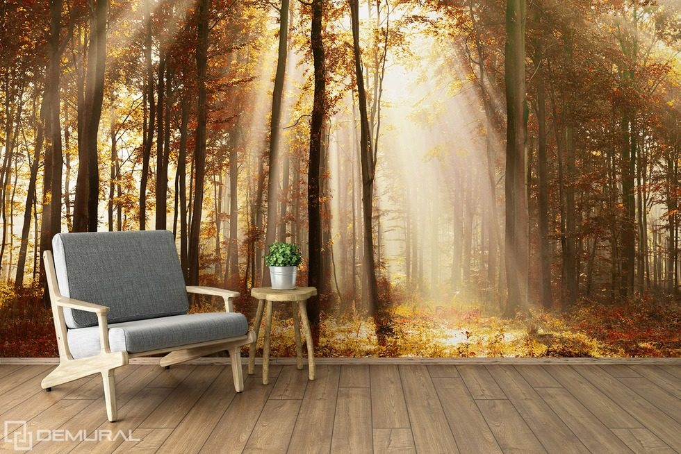 I will tell you a fairytale about forest Forest wallpaper mural Photo wallpapers Demural