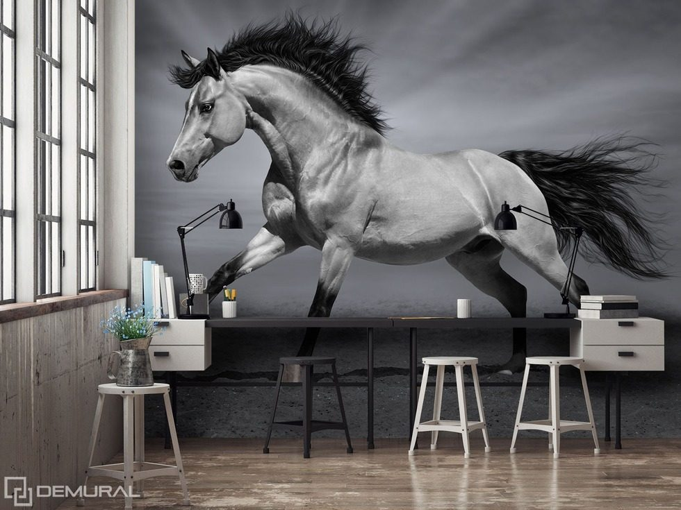 The magic of fauna - The call of the animals Office wallpaper mural Photo wallpapers Demural