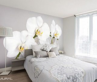 whiteness and a juicy orchid flowers wallpaper mural photo wallpapers demural