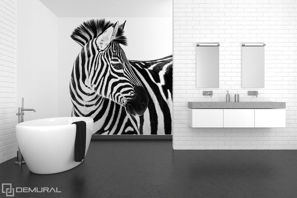Beauty in stripes Animals wallpaper mural Photo wallpapers Demural