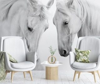 before the gallop animals wallpaper mural photo wallpapers demural