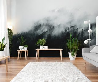 the mysterious fog dispels the boredom of the ethereal interior landscapes wallpaper mural photo wallpapers demural