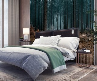 a good nights sleep in the dark forest forest wallpaper mural photo wallpapers demural