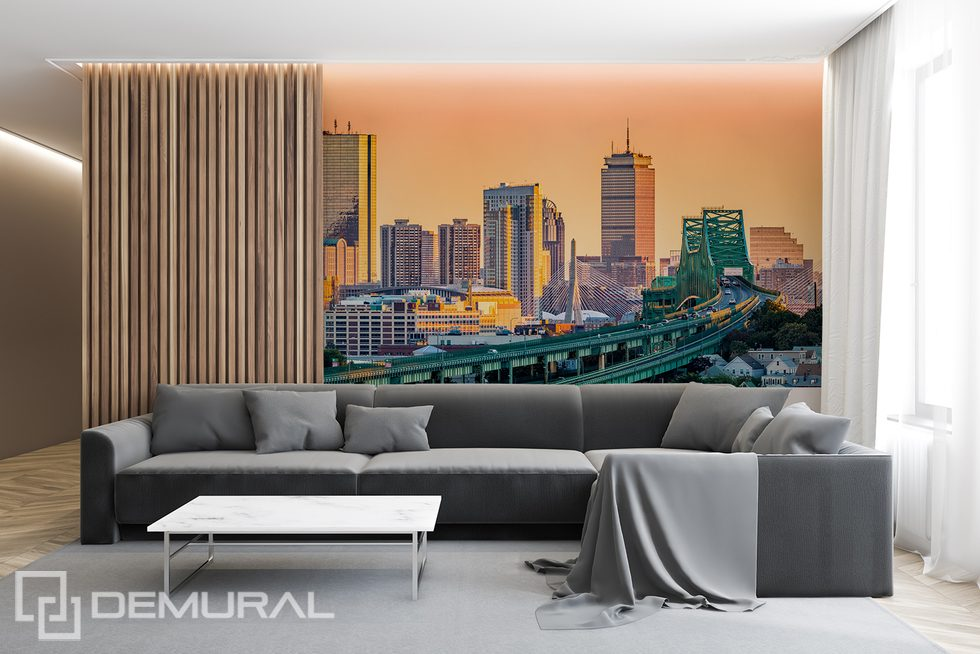 The city - your natural environment Cities wallpaper mural Photo wallpapers Demural
