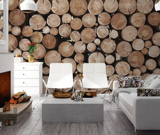 decorative power of raw wood patterns wallpaper mural photo wallpapers demural
