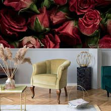 Velvet-carpet-in-rose-flowers-flowers-wallpaper-mural-photo-wallpapers-demural