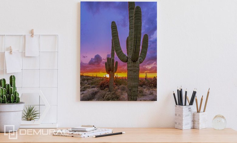 sunset over the cactus valley canvas prints in office canvas prints demural