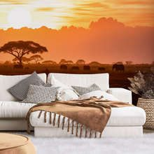 African-sunset-sunsets-wallpaper-mural-photo-wallpapers-demural